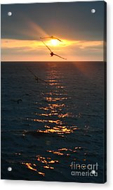 ...and At The End Of The Day... Acrylic Print