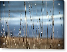 And Then The Sea Acrylic Print by Jez C Self