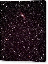 Andromeda Galaxy Acrylic Print by John Sanford