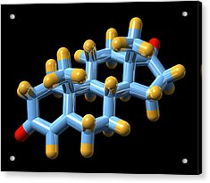 Androstenedione Hormone, Molecular Model Acrylic Print by Dr Mark J. Winter