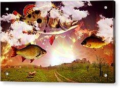 Angel Fish Acrylic Print by Mark Ashkenazi