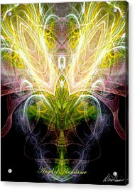 Angel Of Abundance Acrylic Print by Diana Haronis