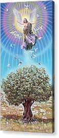 Angel Over The Olive Tree Acrylic Print by Miguel Tio