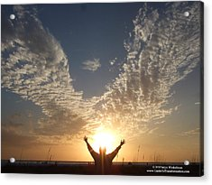 Angel Wings Acrylic Print by Satya Winkelman