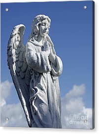 Angelic Acrylic Print by Denise Pohl