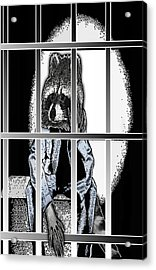 Animal Family 6 Robby Raccoon Acrylic Print by Travis Burns