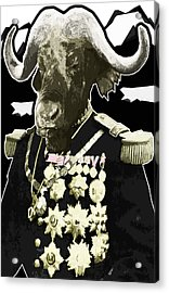 Animal Family 9 General Buffalo Acrylic Print by Travis Burns