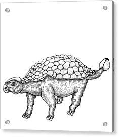 Ankylosaurus - Dinosaur Acrylic Print by Karl Addison