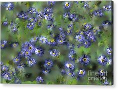 Another Something For You Acrylic Print by Leo Symon