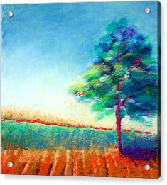 Another Tree In A Field Acrylic Print by Karin Eisermann