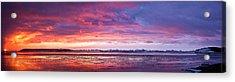 Antarctic Sunset Acrylic Print by David Barringhaus