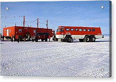 Antarctic Tundra Bus Acrylic Print by David Barringhaus