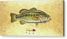 Antique Lure And Bass Acrylic Print by JQ Licensing