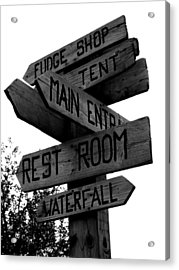 Any Which Way Acrylic Print by Sheryl Burns