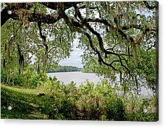 Apalachicola River Acrylic Print