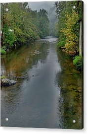 Acrylic Print featuring the photograph Appalachian Trail by Janice Spivey