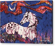 Appaloosa In Flower Field Acrylic Print