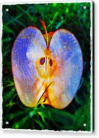 Apple 2 Acrylic Print by Skip Hunt