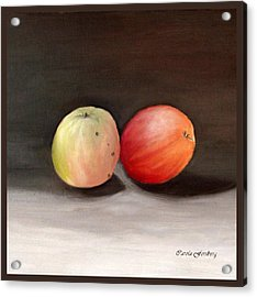 Apples Still Life Acrylic Print by Carola Ann-Margret Forsberg