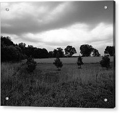 Approaching Storm Over Tree Farm Acrylic Print by Jan W Faul