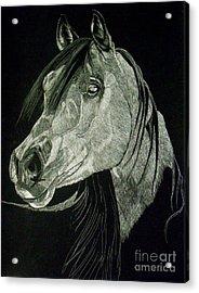 April The Horse Acrylic Print by Yenni Harrison