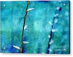 Aqua And Indigo Acrylic Print by Aimelle