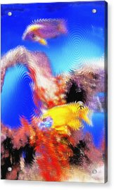 Aquarium Art 8 Acrylic Print by Steve Ohlsen