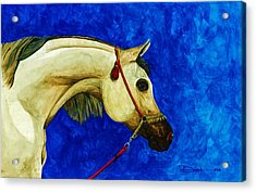Arabian Beauty Acrylic Print by Dana Newman
