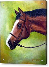 Arabian Horse Acrylic Print by Gizelle Perez