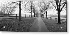 Araby Farm Lane Acrylic Print by Jan W Faul