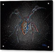 Arachnophobia Acrylic Print by Patrick Witz