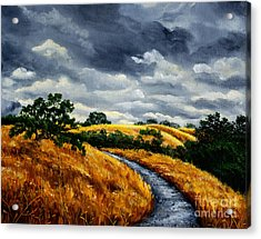Arastradero Trail In Early Autumn Acrylic Print by Laura Iverson