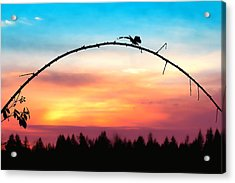 Arch Silhouette Framing Sunset Acrylic Print by Tracie Kaska