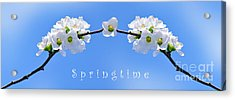 Archway To Springtime Acrylic Print by Kaye Menner