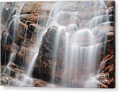 Arethusa Falls - Crawford Notch State Park New Hampshire Usa Acrylic Print by Erin Paul Donovan
