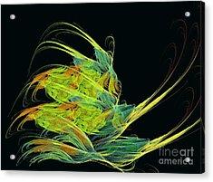 Argonaut Acrylic Print