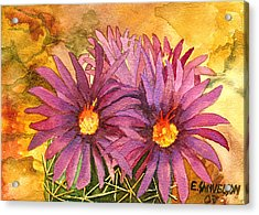 Arizona Pincushion  Acrylic Print