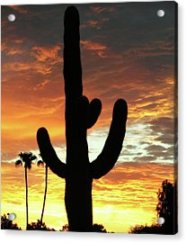 Arizona Sunrise 01 Acrylic Print by Rand Swift