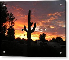 Arizona Sunrise 03 Acrylic Print by Rand Swift