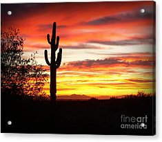 Arizona Sunrise Acrylic Print