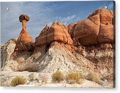 Acrylic Print featuring the photograph Arizona Toadstool Hoodoos by Mike Irwin