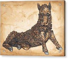 Arkansas Razorback Mascot Acrylic Print by Annie Laurie
