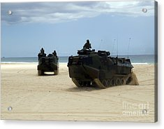 Armored Assault Vehicles Performing Acrylic Print by Stocktrek Images