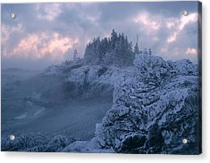 Arrival In The Cold Acrylic Print by Don Dunbar