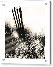 Art In The Sand Series 1 Acrylic Print by Bob Salo