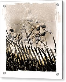 Art In The Sand Series 2 Acrylic Print by Bob Salo