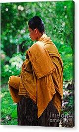 Art Of Meditation II Acrylic Print by Pete Reynolds
