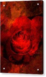 Art Rose Acrylic Print by Martin  Fry