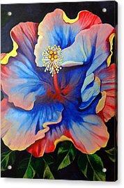 Artemis Acrylic Print by Kyra Belan