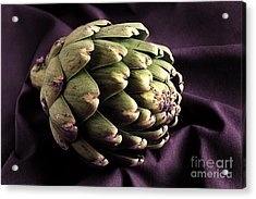 Artichoke Acrylic Print by HD Connelly